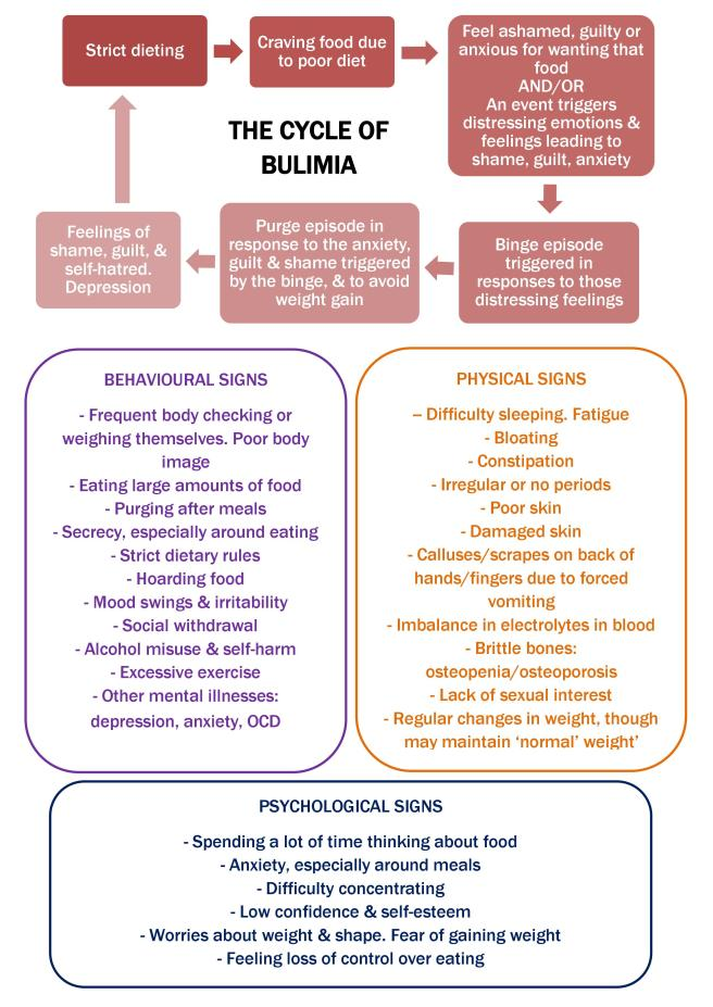 The cycle of bulimia